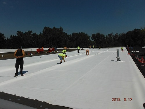TPO Roofing Membrane | Commercial Roofing Installation & Replacement